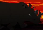 TLK3 Rhino