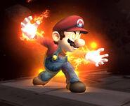 Mario 070529b