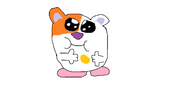 Corey the Hamster
