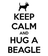 Keep-calm-and-hug-a-beagle-20