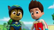 PAW Patrol Pups Save the Songbirds Scene 28