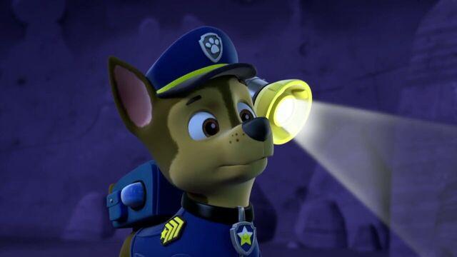 File:PAW.Patrol.S01E26.Pups.and.the.Pirate.Treasure.720p.WEBRip.x264.AAC 465265.jpg
