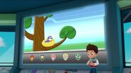 PAW Patrol Pups Save the Songbirds Scene 16