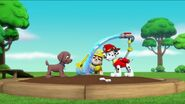 PAW Patrol Pups Save the Songbirds Scene 7