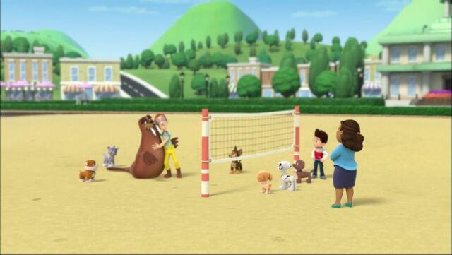 File:PAW Patrol - Wally the Walrus - Volleyball.jpg