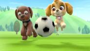 Skye and Zuma with Ball