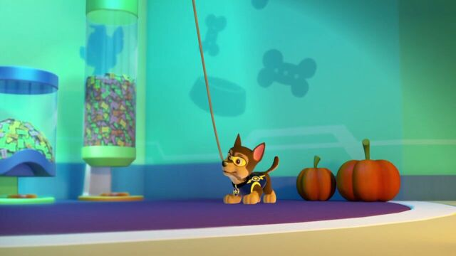 File:PAW.Patrol.S01E12.Pups.and.the.Ghost.Pirate.720p.WEBRip.x264.AAC 83216.jpg