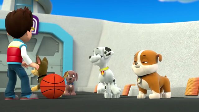 File:PAW.Patrol.S01E26.Pups.and.the.Pirate.Treasure.720p.WEBRip.x264.AAC 151918.jpg