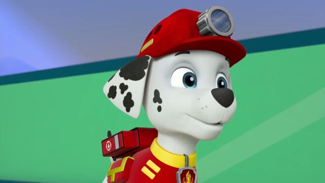 File:PAW.Patrol.S02E07.The.New.Pup.720p.WEBRip.x264.AAC 175609.jpg