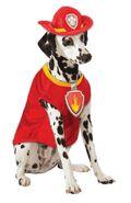 Pet costume- Marshall