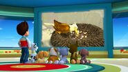 PAW.Patrol.S01E21.Pups.Save.the.Easter.Egg.Hunt.720p.WEBRip.x264.AAC 1357389