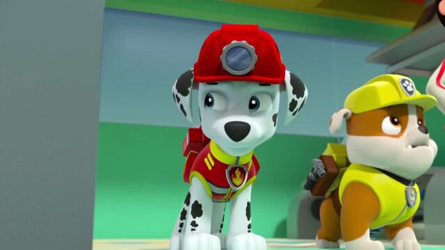File:PAW.Patrol.S02E07.The.New.Pup.720p.WEBRip.x264.AAC 1269201.jpg