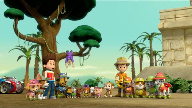 File:Monkey-dinger 48.jpg