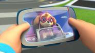 Monkey (Skye on Pup pad)