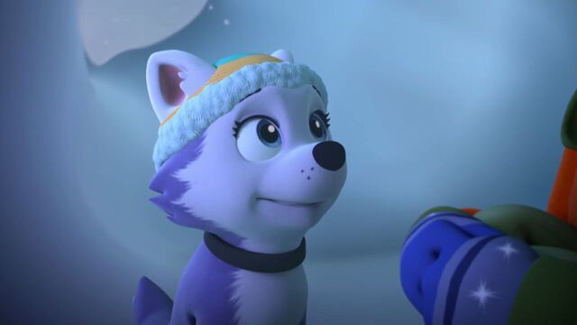 File:PAW.Patrol.S02E07.The.New.Pup.720p.WEBRip.x264.AAC 571905.jpg