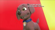 PAW Patrol Pups Save the Hippos Zuma
