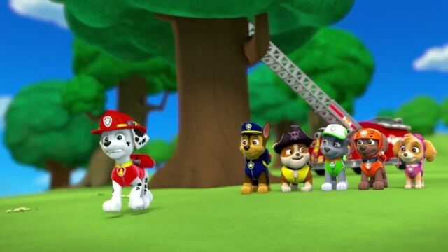 File:PAW.Patrol.S01E26.Pups.and.the.Pirate.Treasure.720p.WEBRip.x264.AAC 1037169.jpg