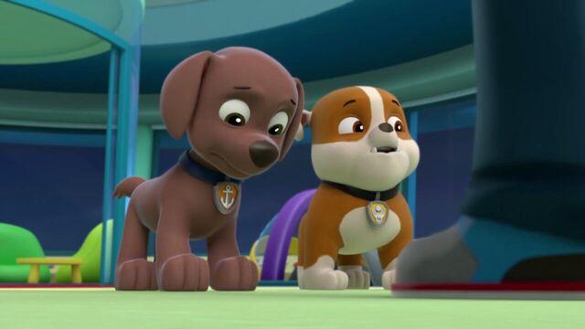 File:PAW.Patrol.S01E16.Pups.Save.Christmas.720p.WEBRip.x264.AAC 254588.jpg