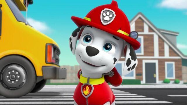 File:PAW Patrol Pups Save a School Bus Scene 49 Marshall.jpg