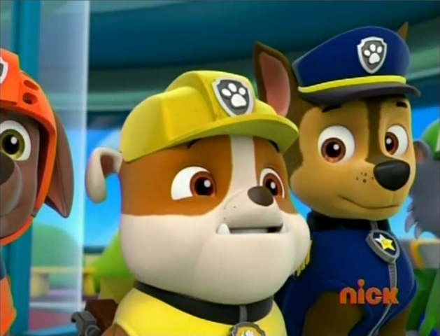 File:Pups and the Pirate Treasure rubble asking Ryder.png