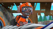 PAW Patrol Pups Save the Hippos Scene 41