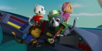 Cat Chase/Gallery/Pups Save the PAW Patroller