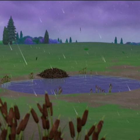 Farmer Yumi's Pond