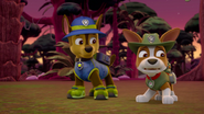 PAW Patrol 315 Scene 63 Chase and Tracker