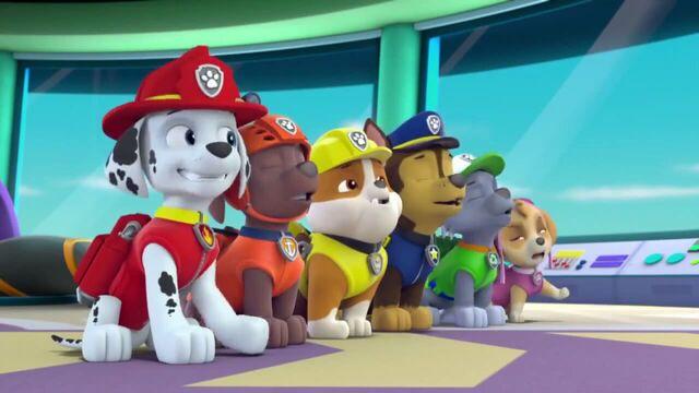 File:PAW Patrol Season 2 Episode 10 Pups Save a Talent Show - Pups Save the Corn Roast 422322.jpg