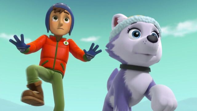 File:PAW.Patrol.S02E07.The.New.Pup.720p.WEBRip.x264.AAC 1013379.jpg