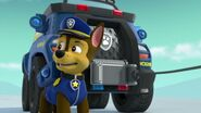 PAW.Patrol.S02E07.The.New.Pup.720p.WEBRip.x264.AAC 1131063