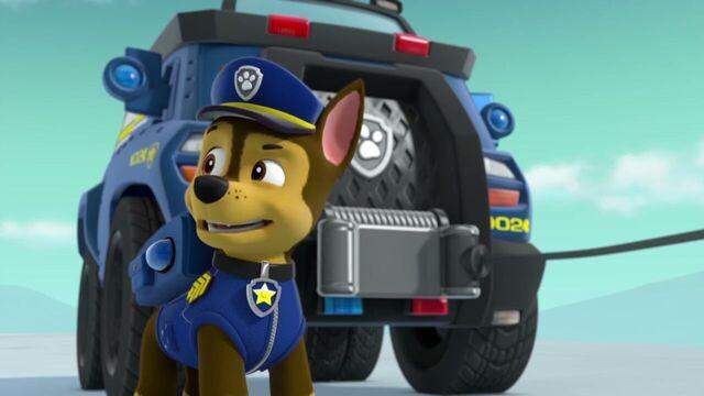 File:PAW.Patrol.S02E07.The.New.Pup.720p.WEBRip.x264.AAC 1131063.jpg
