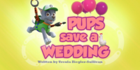 Pups Save a Wedding