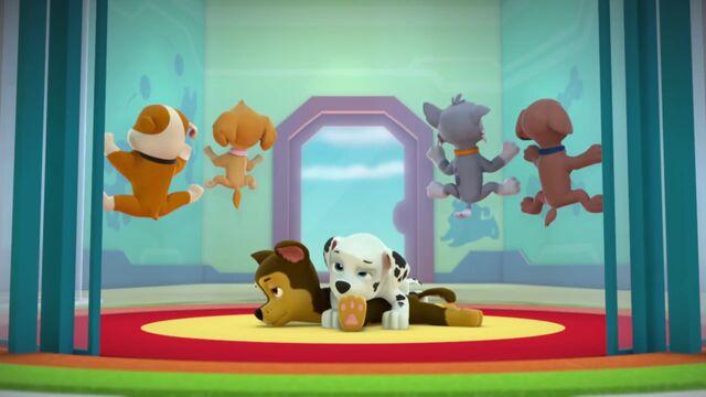 Plik:PAW.Patrol.S02E02.Pups.Save.the.Penguins.-.Pups.Save.a.Dolphin.Pup.720p.WEBRip.x264.AAC.mp4 000163363.jpg
