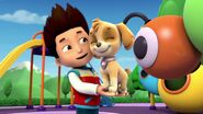 PAW.Patrol.S01E15.Pups.Make.a.Splash.-.Pups.Fall.Festival.720p.WEBRip.x264.AAC 676876