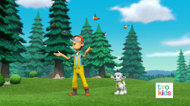File:PAW Patrol Pups Save a Flying Kitty 1.jpg