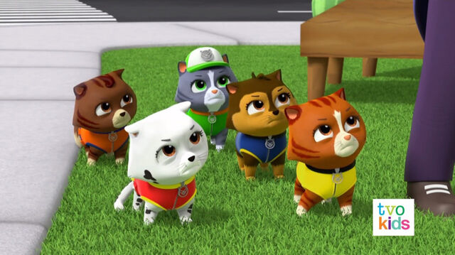 File:PAW Patrol Pups Save a Flying Kitty 32.jpg