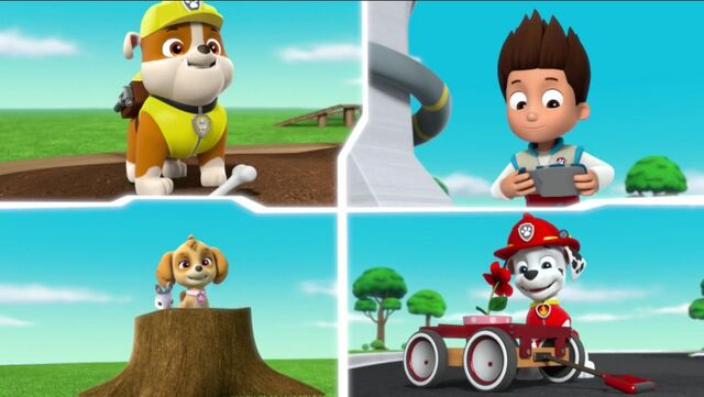 File:PAW Patrol Pups Save the Songbirds Scene 10.jpg