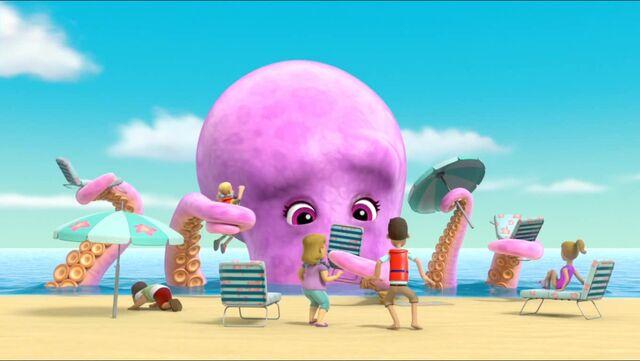 File:Baby Octopus 68.jpg