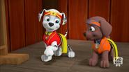 Pup-Fu!67(Marshall gets a belt)