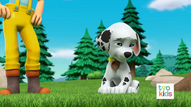 File:PAW Patrol Pups Save a Flying Kitty 10.jpg