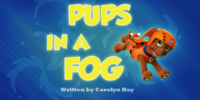 Pups in a Fog