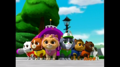 Kitten Catastrophe Crew