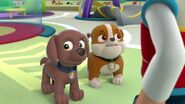 PAW.Patrol.S01E16.Pups.Save.Christmas.720p.WEBRip.x264.AAC 250117