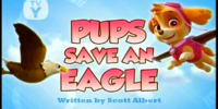 Pups Save an Eagle/Images