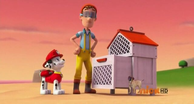File:PAW Patrol Cap'n Turbot Captain Bees and Marshall.jpg