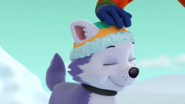 File:PAW.Patrol.S02E07.The.New.Pup.720p.WEBRip.x264.AAC 761094.jpg
