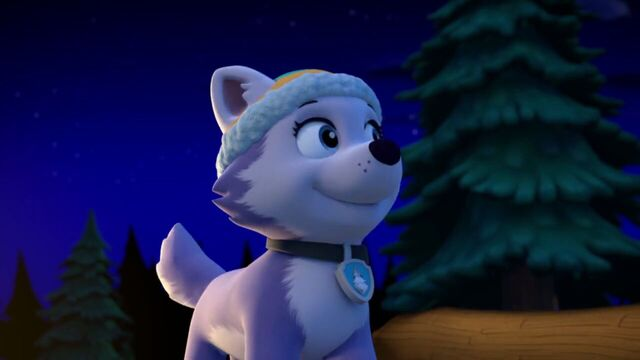 File:PAW.Patrol.S02E07.The.New.Pup.720p.WEBRip.x264.AAC 1319652.jpg