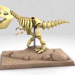 The dinosaur skeleton
