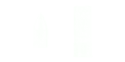 AP Slug